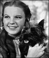 Toto & Judy