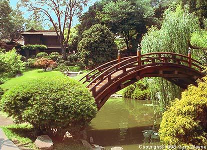 Japanese Bridge At The Huntington Library Photo