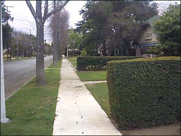 pictured at the right in the opening shot of haddonfield just before laurie and annie encounter the shape behind the hedge - Haddonfield Nj Halloween