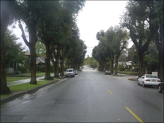 from the halloween opening jamie lee curtis crosses right to left leaving magnolia and moving south down the west side of meridian towards 707 the - Haddonfield Nj Halloween