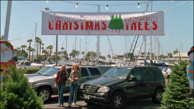 THE O C Filming Locations Summer's Christmas Tree Lot - Location Of Christmas Trees